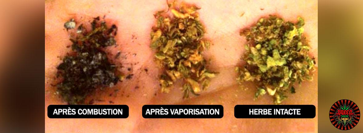 marihuana vaporizada